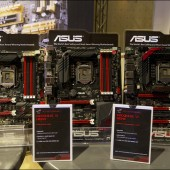 asus81